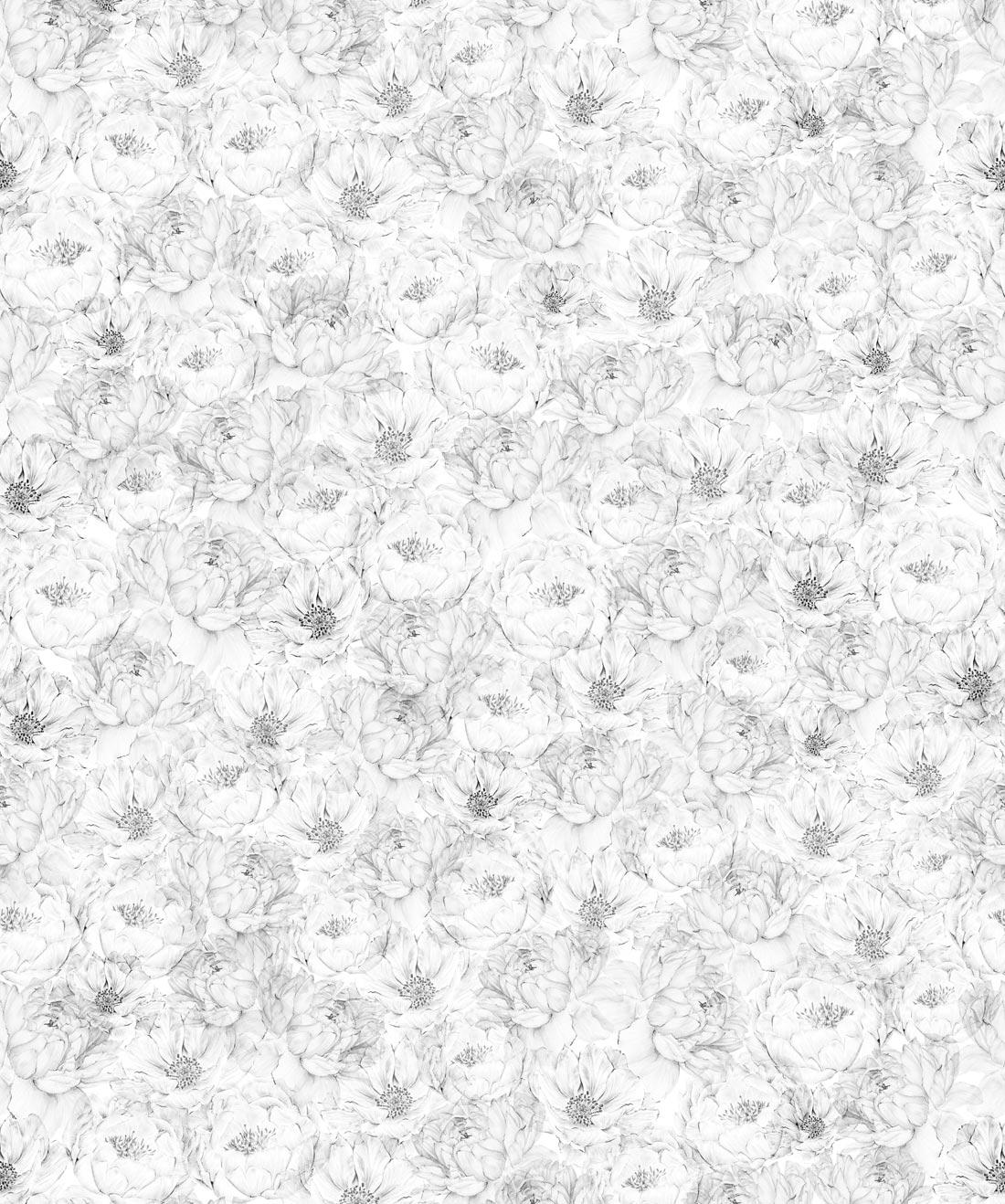 Peonies & Anemones Wallpaper