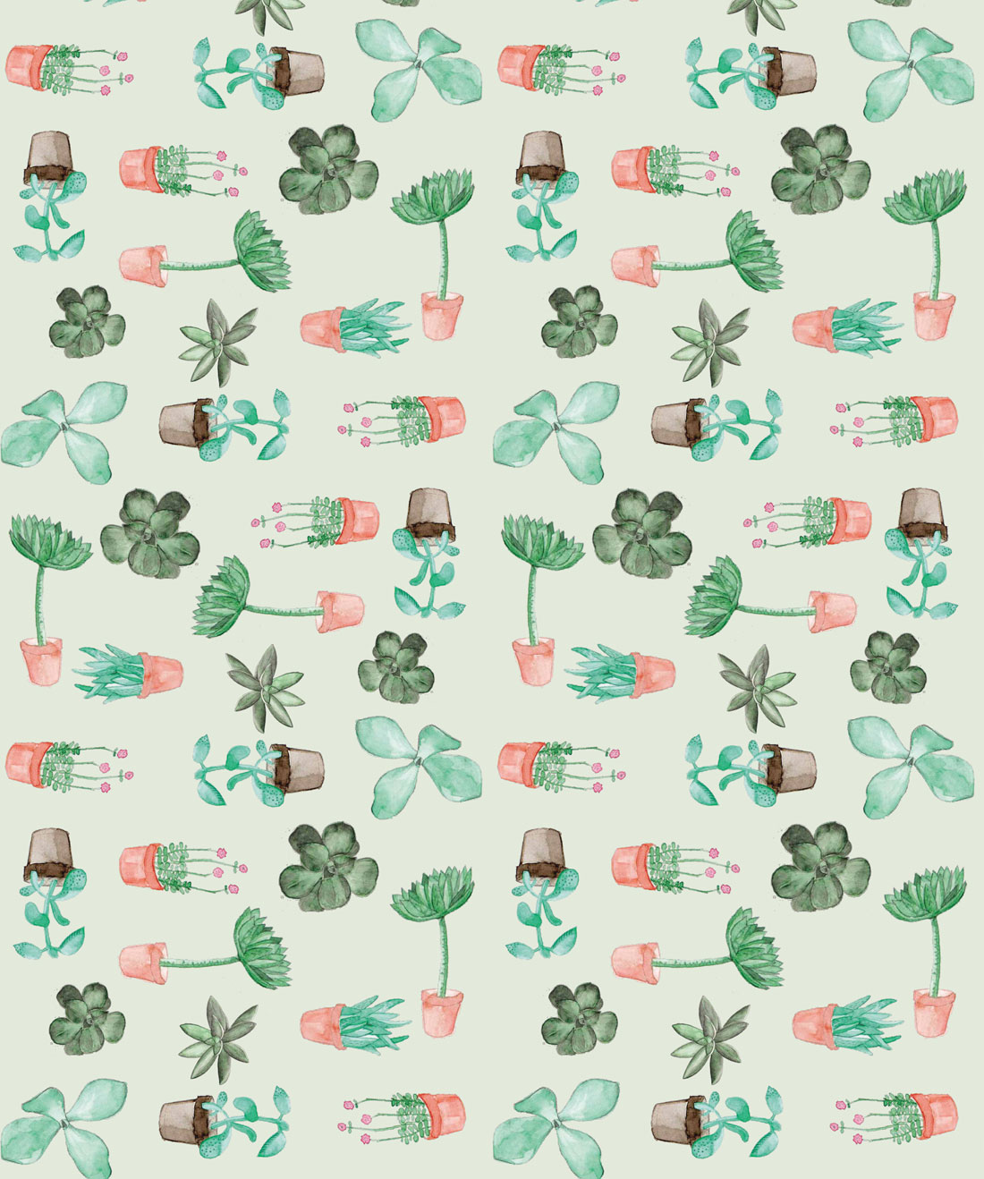 Succulents Cactus Botanical Wallpaper Milton King