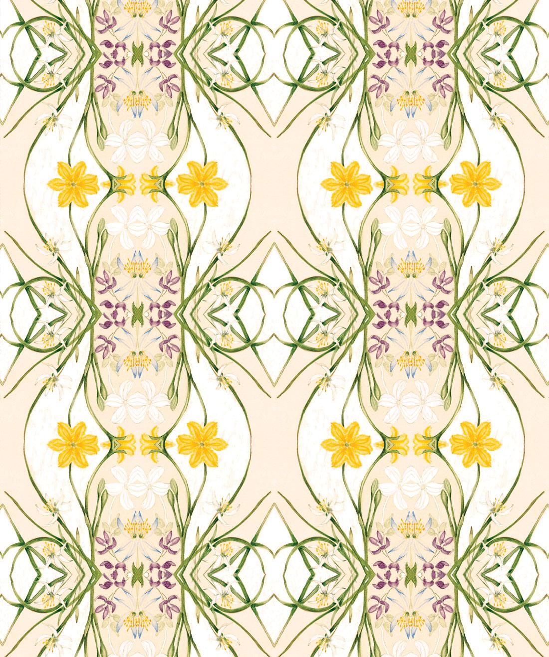 Euphemia 1 Wallpaper