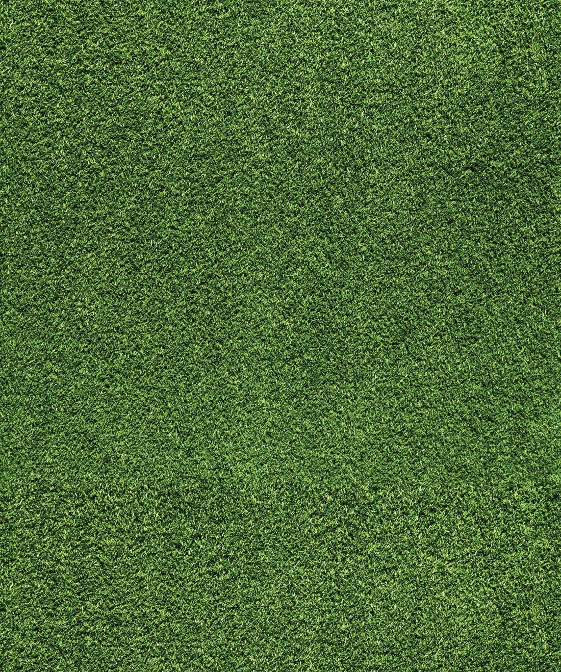 Artificial Turf Wallpaper Fake Green Grass Milton King