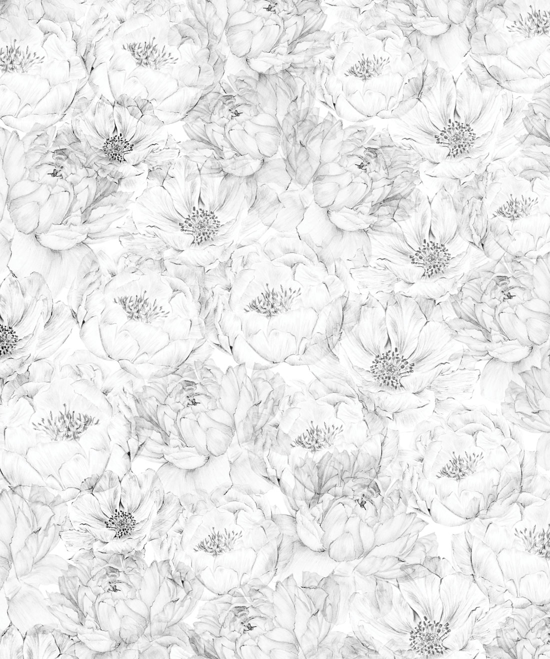 Peonies & Anemones Wallpaper (Two Roll Set)