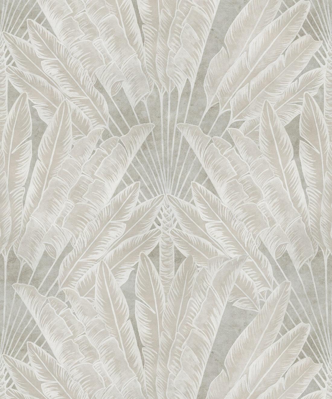 Travelers Palm Wallpaper